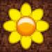 Pixel Seeds